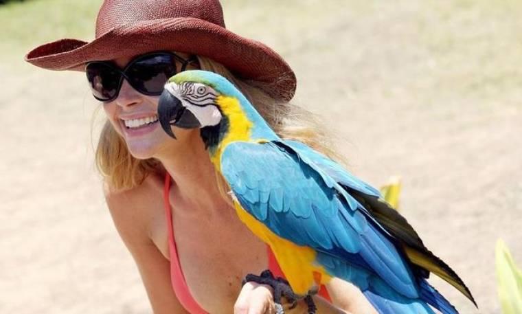 Στο Maui με τους παπαγάλους
