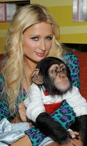 Στα εγκαίνια θεματικού πάρκου η Paris Hilton