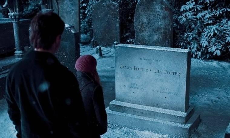 Ο Harry Potter εξαφάνισε τις… κουκουβάγιες