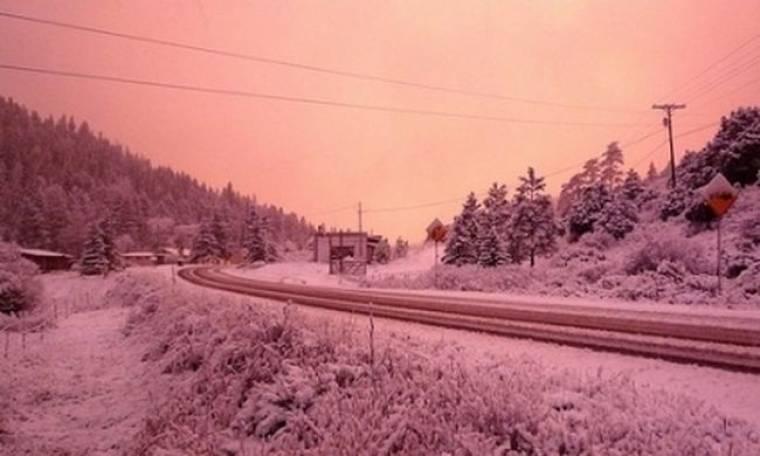 Ροζ... χιόνι στην Στοκχόλμη!