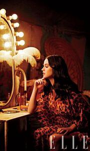 Οι ακάλυπτες επιταγές της Katy Perry