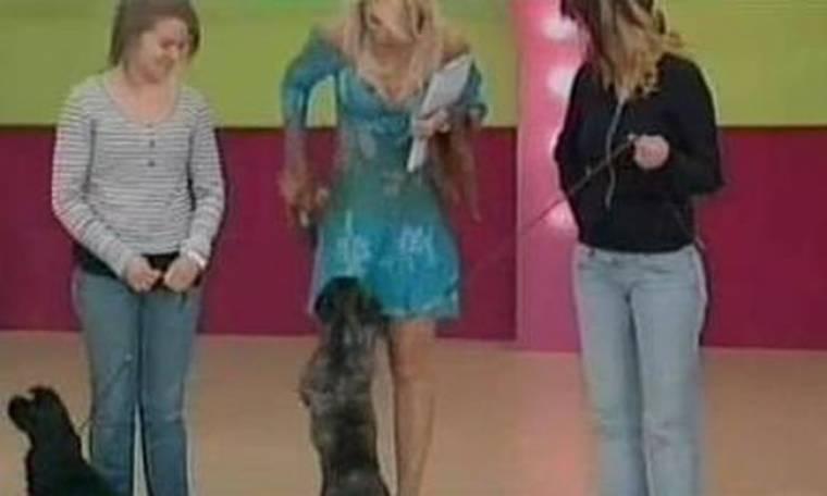 Video: Ελένη Μενεγάκη: Θυμάστε; Της έχει ορμήσει ξανά σκύλος!