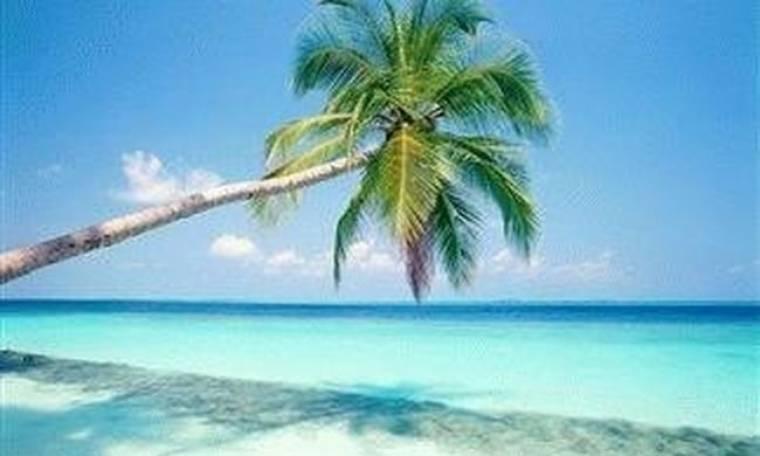 Φωτογραφικό album των διασήμων με τα νησιά τους!