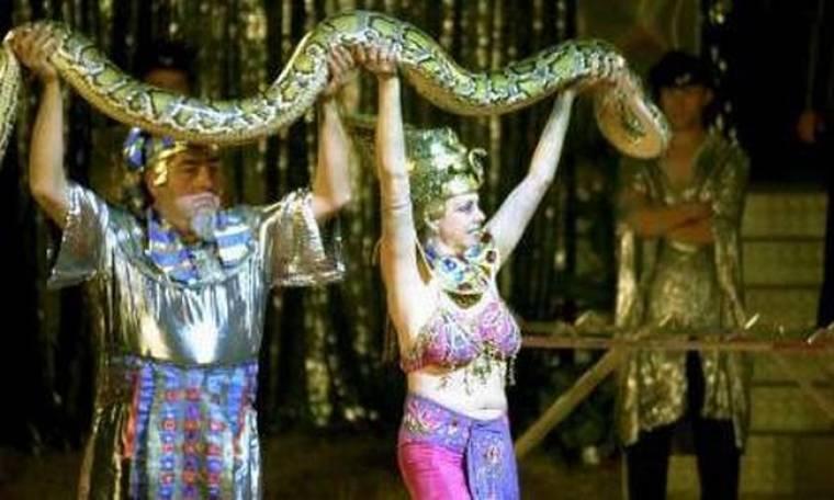 Φίδι... σε μπουζουξίδικο!