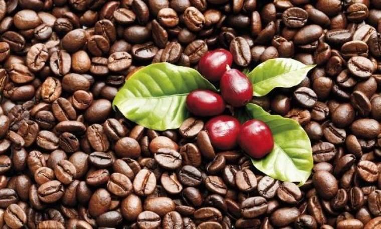 Ο καφές κάνει καλό στην υγεία