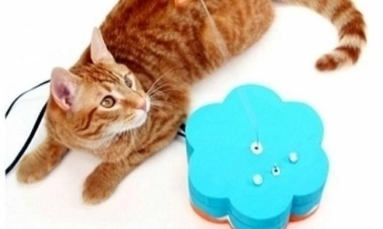 Παιχνίδι για γάτες συνδεδεμένο με το Twitter! (pics)
