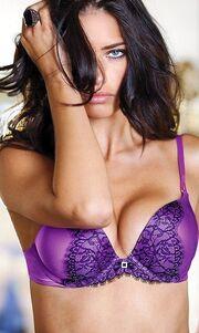 Adriana Lima: Υποδέχεται topless το νέο έτος