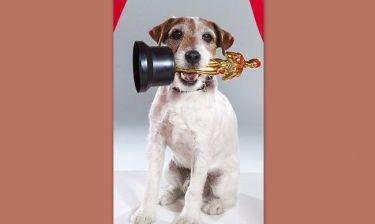 Τέλος καριέρας για τον σκύλο του Artist λόγω μυστηριώδους αρρώστιας
