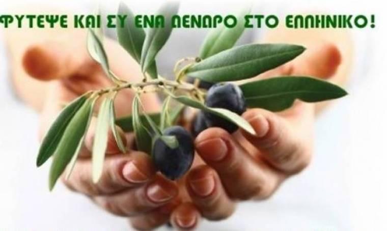 Φύτεψε και εσύ ένα δέντρο στο Ελληνικό