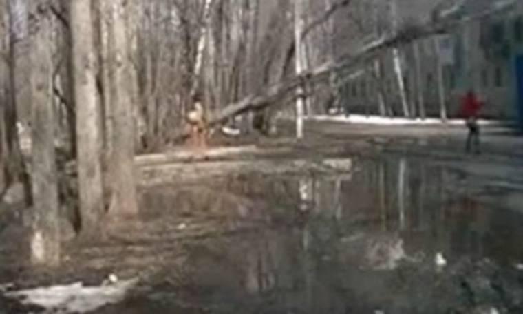 VIDEO: Διερχόμενη γλιτώνει τελευταία στιγμή από δέντρο που πέφτει!