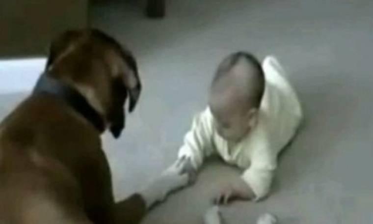 VIDEO: Σκύλος και μωράκι κρατιούνται από το χέρι!