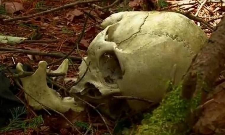 Το καταραμένο δάσος των αυτοκτονιών