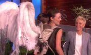 Τα φτερά – καρεκλάκι μωρού της Miranda Kerr