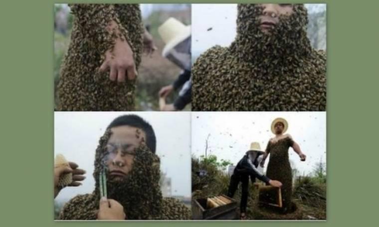 Απίστευτο: Καλύφθηκε με 331.000 μέλισσες για να σπάσει το ρεκόρ (pics)