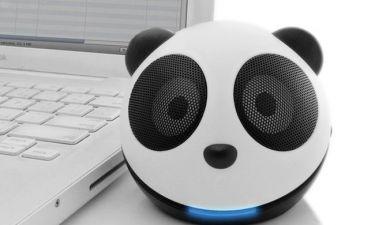 Για τους Panda lovers