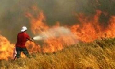 Πολύ υψηλός κίνδυνος πυρκαγιάς σε Εύβοια, Σκύρο, Λέσβο, Χίο