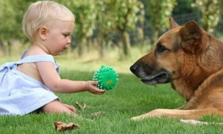 Υγιέστερα τα μωρά που μεγαλώνουν σε σπίτι με σκύλο