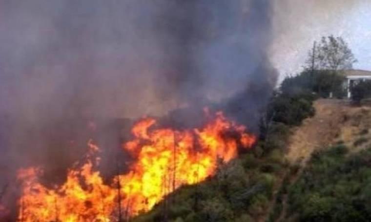 Ποιες περιοχές κινδυνεύουν με πυρκαγιά τη Δευτέρα