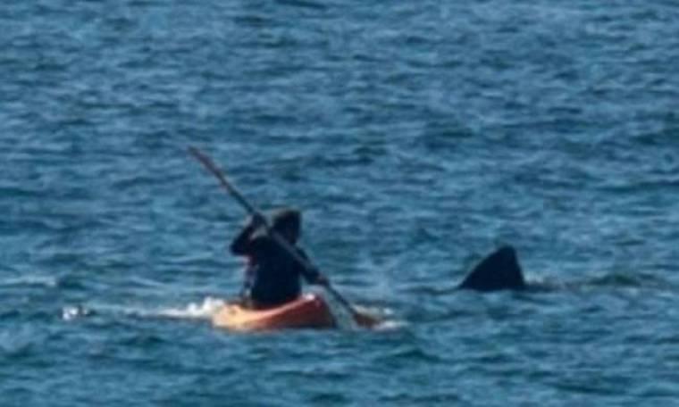 Καρχαρίες στην Αγγλία! (photos)
