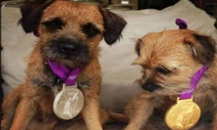 Λονδίνο 2012: Στα... σκυλιά τα μετάλλια του Άντι Μάρεϊ