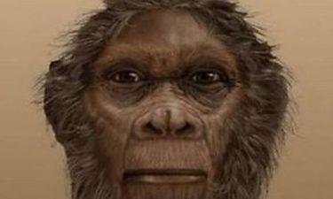 Ανακαλύφθηκε νέος πρόγονος του ανθρώπου