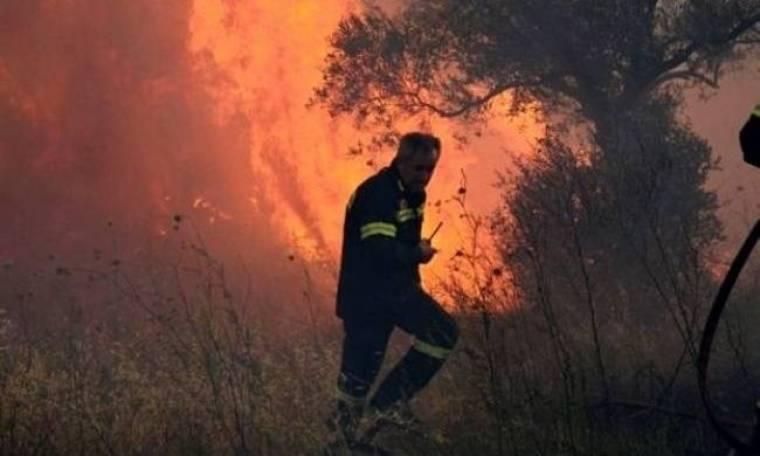 Μεγάλες αναζωπυρώσεις σε Χίο – Κόλαση στη Καλαμπάκα