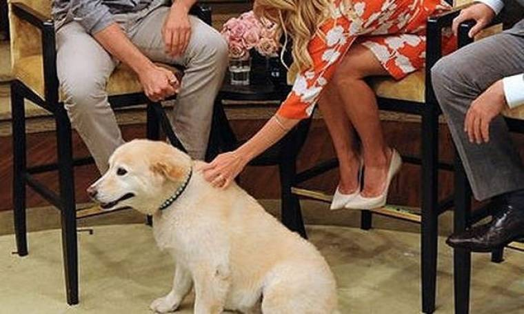 Ποιος ηθοποιός εμφανίστηκε με το σκύλο του σε εκπομπή;