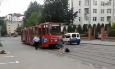Εκπληκτικό: Σκύλος προσπάθησε να... αυτοκτονήσει στο τραμ!