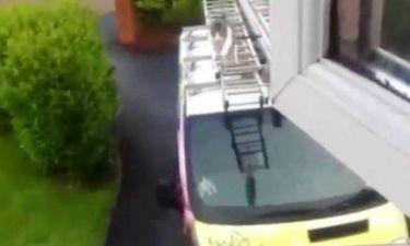 Απίστευτο: Γάτα πηδάει από οροφή φορτηγού σε περβάζι