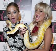 Πήραν το φίδι αγκαλιά και… κατατρόμαξαν!