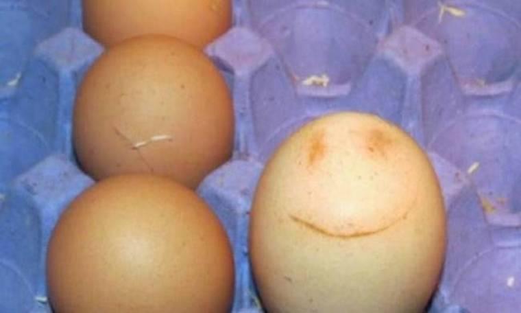 Η κότα της γέννησε... χαμογελαστό αυγό! (φωτό)
