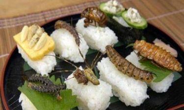 Νεαρός πέθανε αφού έφαγε... 160 έντομα!