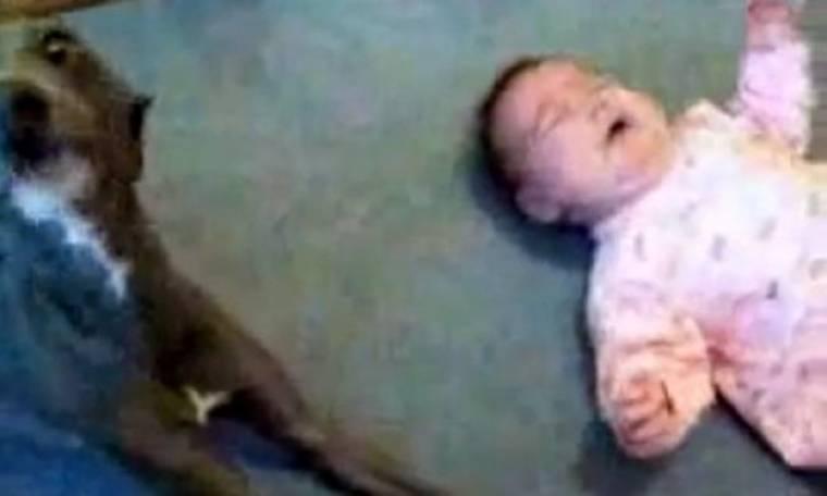 Βίντεο: Το μωρό κλαίει και ο σκύλος μιμείται το κλάμα το