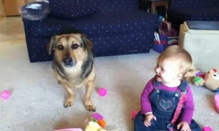 Ένας σκύλος, ένα μωρό και πολλές… φούσκες!