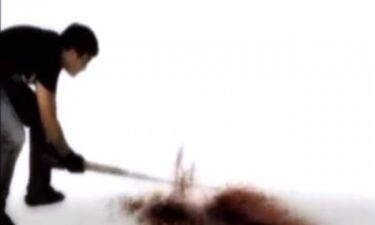 Βίντεο: Ο άνθρωπος που σκότωσε το Πουλάκι τσίου επιστρέφει!
