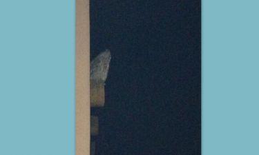 Μία κουκουβάγια στο μπαλκόνι διάσημης ηθοποιού