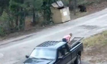 Τρία αρκουδάκια σώθηκαν πριν καταλήξουν σε... χωματερή (video)