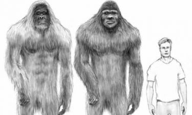 Βίντεο: Στοιχεία DNA λένε ότι τελικά ο Μεγαλοπόδαρος υπάρχει!