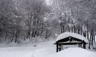 27 νεκροί στην Ουκρανία από τις πολικές θερμοκρασίες!