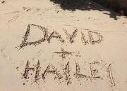 Δείτε την προκλητική φωτογραφία που πόσταρε στο twitter η αγαπημένη του David HasselHoff
