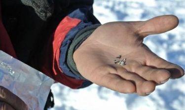 Βρήκαν «χρυσό» στο σημείο που έπεσε ο μετεωρίτης