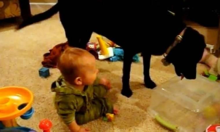 Βίντεο: Μωρό γελάει μέχρι… δακρύων με μία μπάλα και έναν σκύλο!