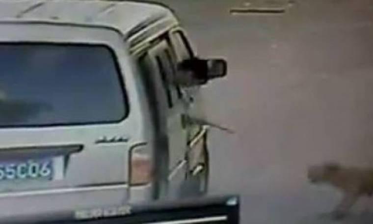 Βίντεο: Απαγωγή σκύλου on camera