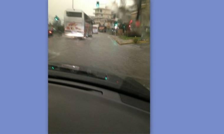 Η Τατιάνα Στεφανίδου στην... βροχή