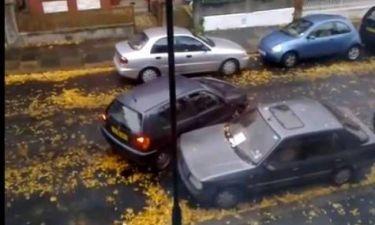 Βίντεο: Αν δείτε αυτήν την οδηγό στο δρόμο... κάντε τον σταυρό σας