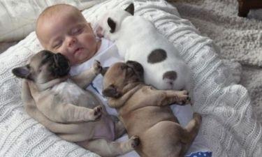 Η απίστευτη σχέση ενός μωρού με τρία κουτάβια!