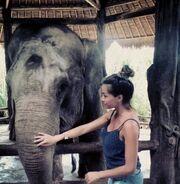 Δείτε στιγμιότυπα από το ταξίδι της Όλγας Φαρμάκη σε Σιγκαπούρη και Μπαλί!