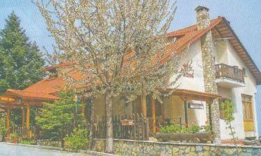 Βασίλης Μαυρομάτης: Πουλά τον ξενώνα του στην λίμνη Πλαστήρα