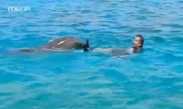 Το όνειρο του Λιάγκα έγινε πραγματικότητα! Κολύμπησε με τα δελφίνια!