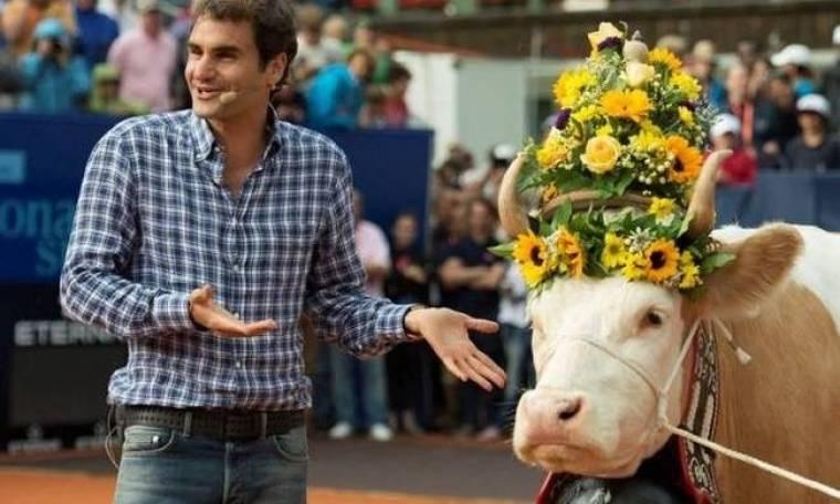 Τένις: Πρόσφεραν… αγελάδα στον Φέντερερ (video)